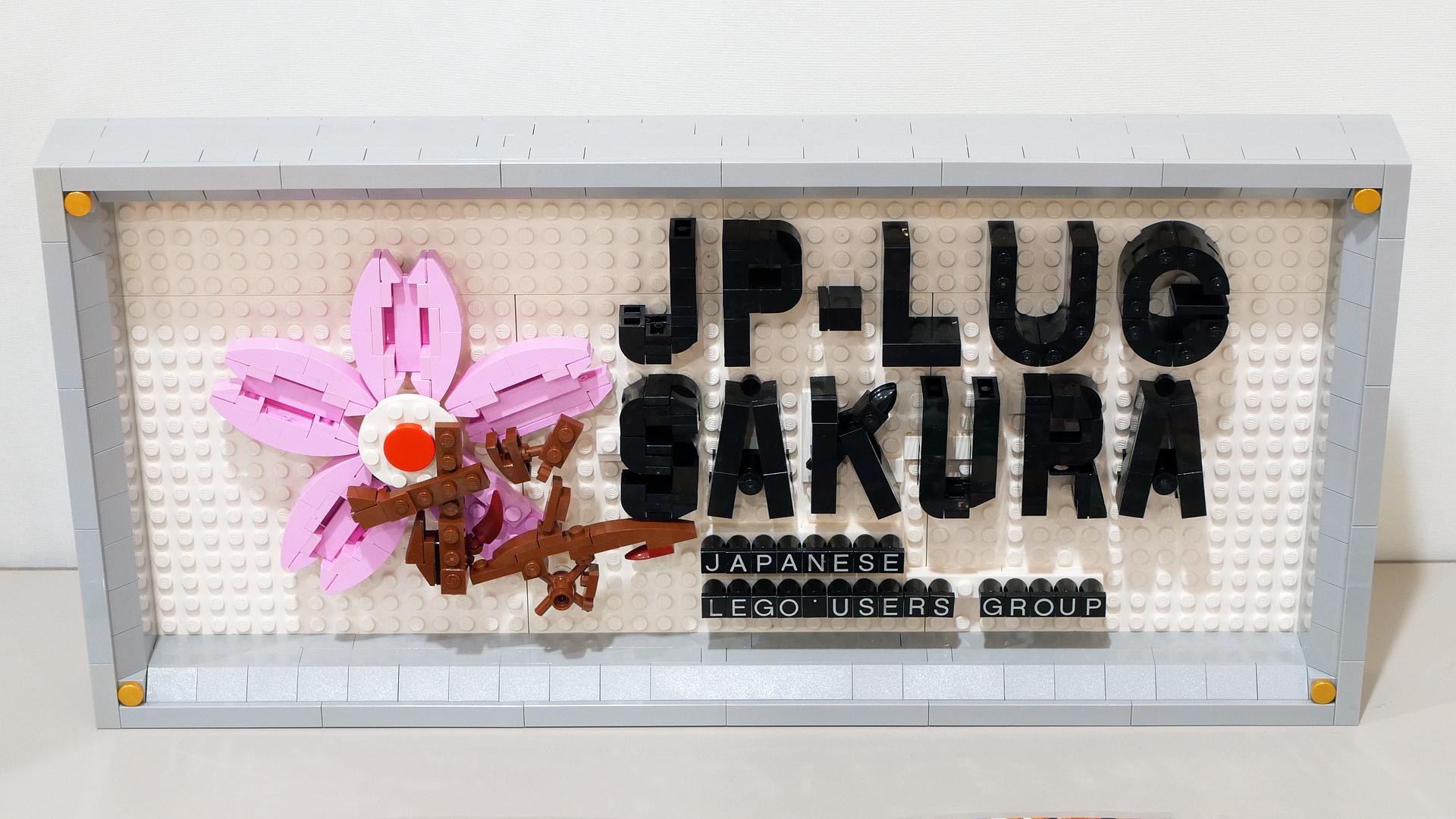 SakulugCar202101_12.jpg